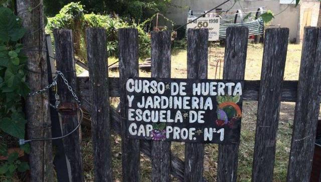 Desalojaron violentamente a alumnos de curso municipal de for Aprender jardineria