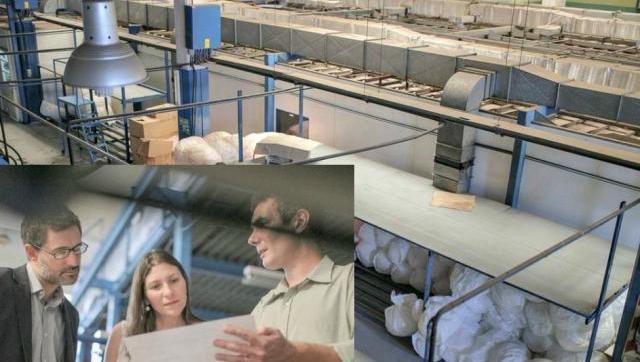Aprueban proyecto del FpV para proteger a la fábrica de Morón que produce las únicas jeringas del país