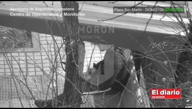 Detienen a dos vendedores de droga en pleno centro de Morón, gracias a las cámaras de seguridad