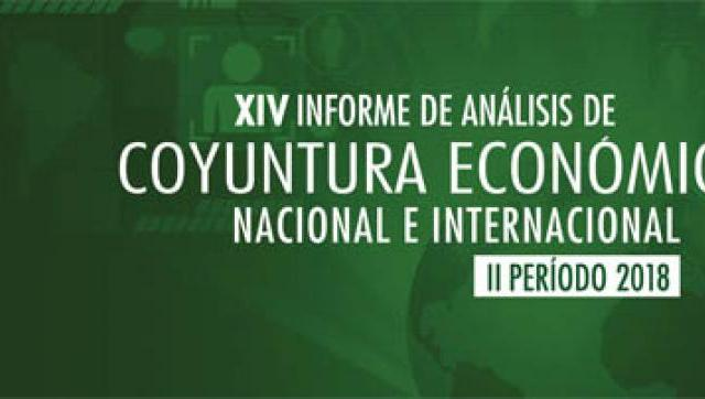 Informe XIV de Análisis de la Coyuntura Económica