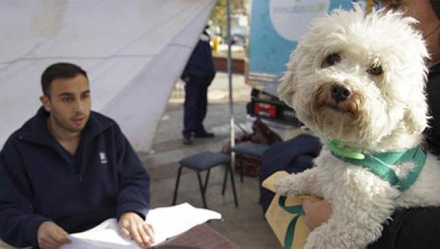 Campañas para el cuidado de las mascotas en el Oeste